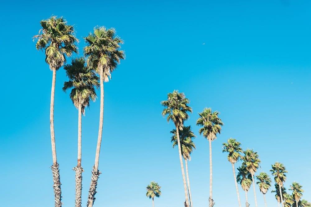 California Road Trip_076.jpg