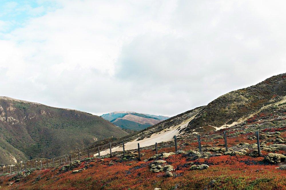 California Road Trip_097.jpg