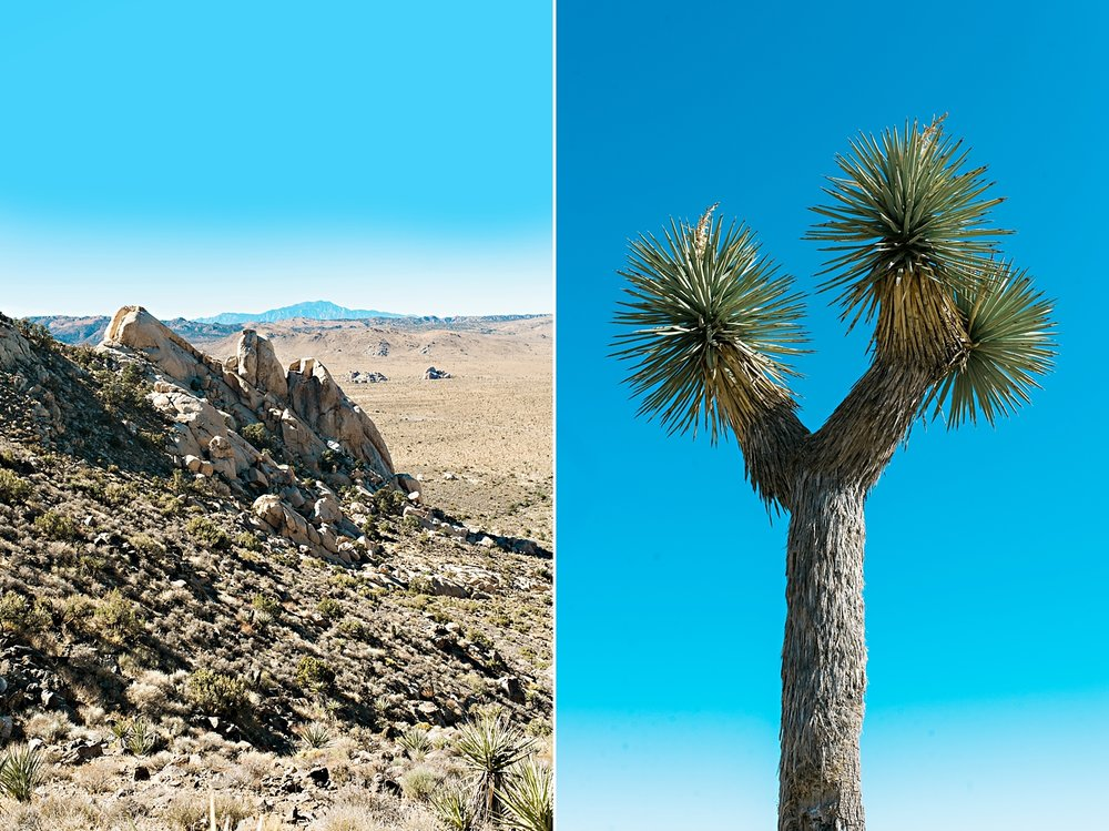 California Road Trip_151.jpg