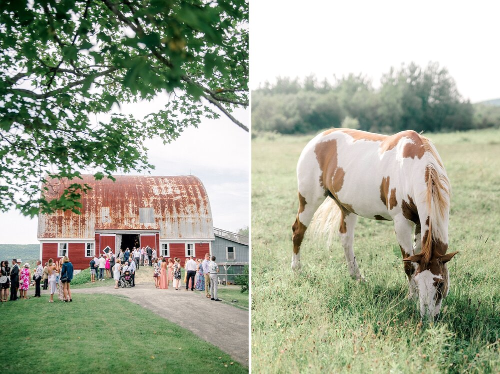 Halifax-Wedding-Photographer-summer-romantic-farm_53.jpg