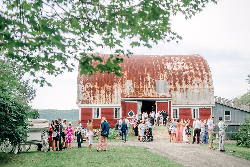 Halifax-Wedding-Photographer-summer-romantic-farm_56.jpg