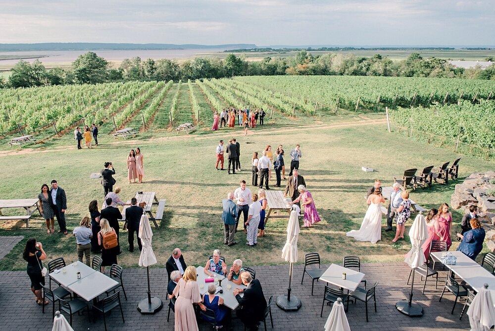 Lightfoot & Wolfville-Vineyard-Summer-Outdoor-Wedding-Halifax-Photographer_56.jpg