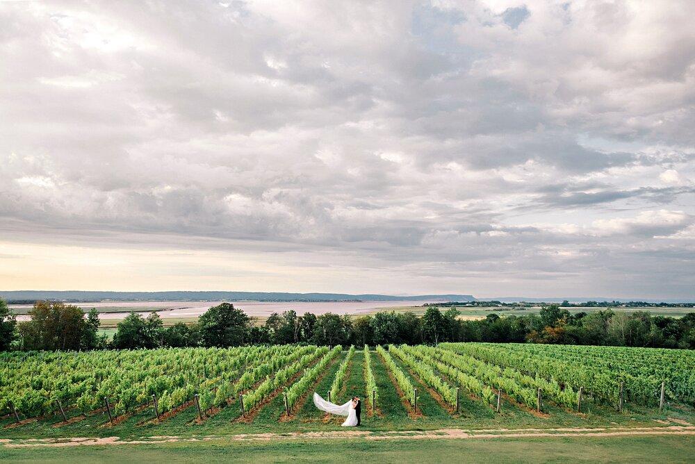 Lightfoot & Wolfville-Vineyard-Summer-Outdoor-Wedding-Halifax-Photographer_57.jpg