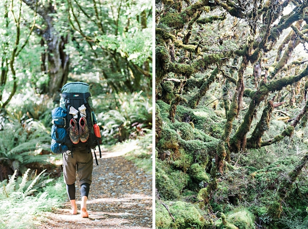 New Zealand  |  Candace Berry Photography008