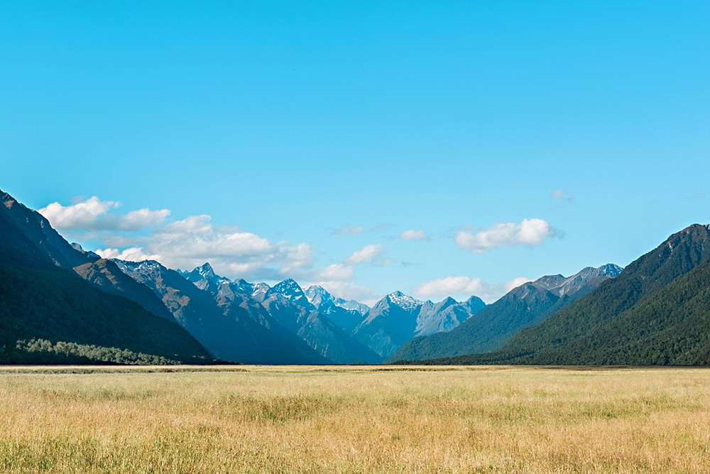 New Zealand  |  Candace Berry Photography048