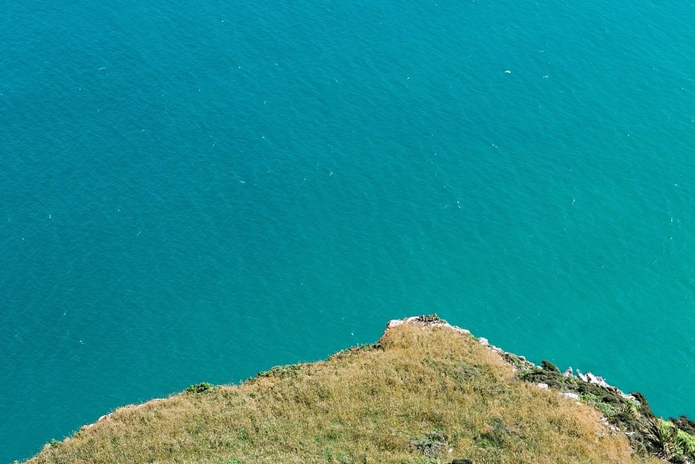 New Zealand  |  Candace Berry Photography074