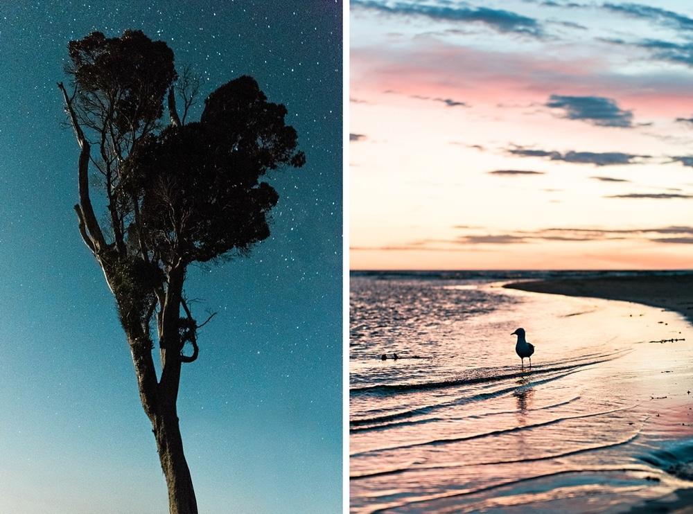 New Zealand  |  Candace Berry Photography077