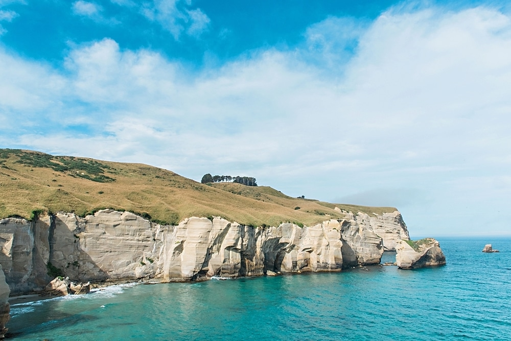 New Zealand  |  Candace Berry Photography090