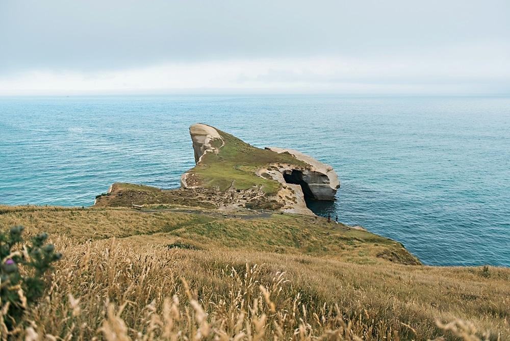 New Zealand  |  Candace Berry Photography093