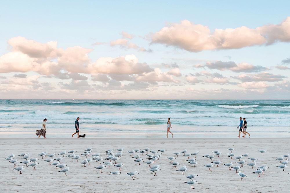 New Zealand  |  Candace Berry Photography132